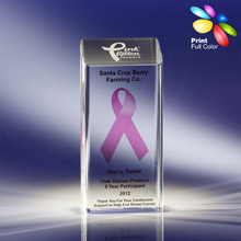 Pink Ribbon Award